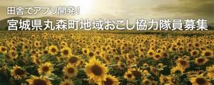 marumori_main_small_2