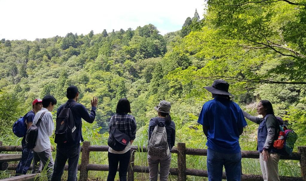 智頭町の森で森のガイドをする原田